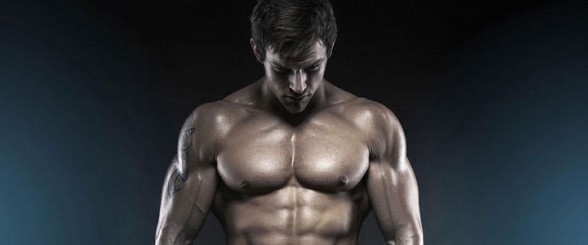 proteini za mišice