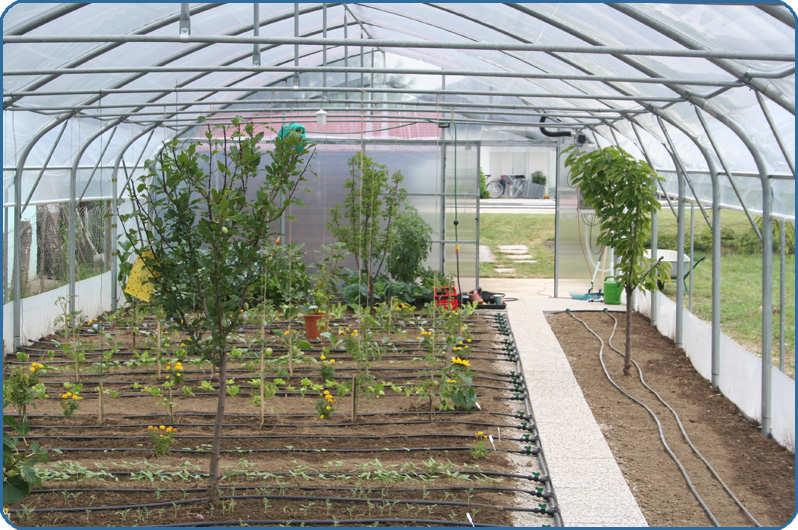 cevi za kapljično zalivanje vrta