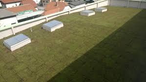 Ravna zelena streha Norik