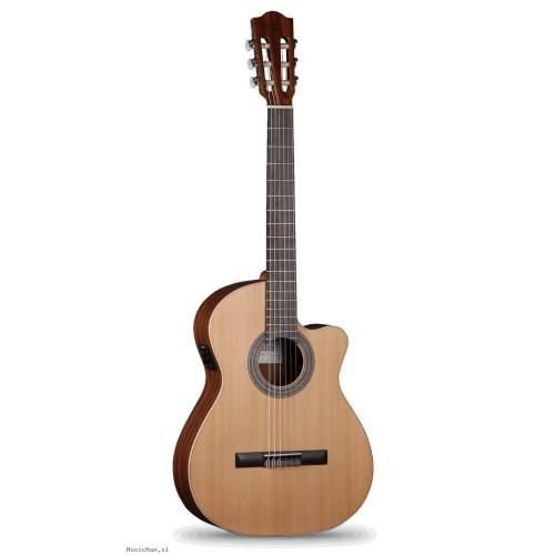Prodaja kitar in opreme za kitare