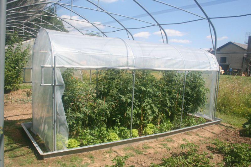 pvc folija za rastlinjak za paradižnik